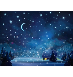 Winter night blue vector
