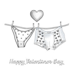 Womens panties and mens boxer briefs in the vector