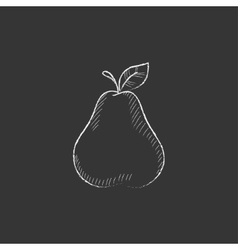 Pear drawn in chalk icon vector