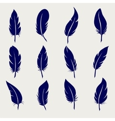 Ball pen feather sketch set vector image
