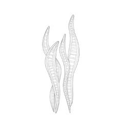 Long seaweed sea underwater nature adult black and vector