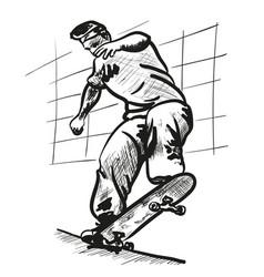 skate board vector image vector image