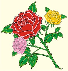 With red rose vector