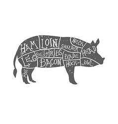 American cuts of pork vintage typographic vector