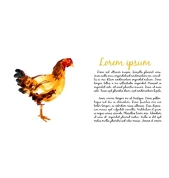 Design template with watercolor hens vector image vector image