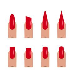 nails shape icons flat vector image vector image