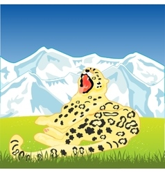 Snow leopard on nature vector image vector image