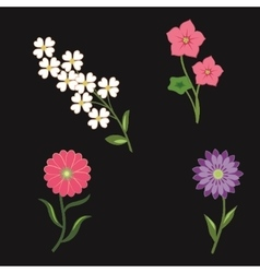 Flower icons set chamomile tulip petunia vector