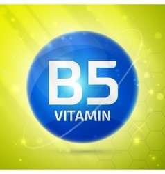 Vitamin b5 icon vector