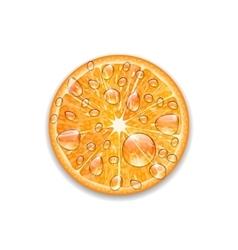 Photo realistic slice of orange vector