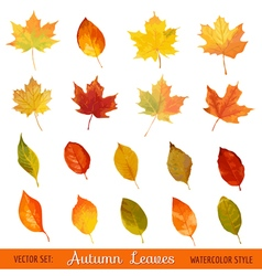 Set Colorful Autumn Leaves - in Watercolor Style vector image vector image