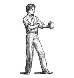 Vintage boxer sketch vector