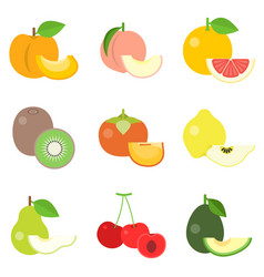 Fruit icons set 3 vector