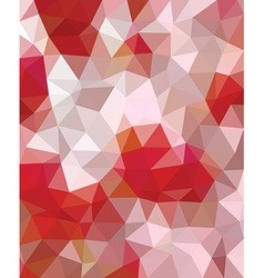 Polygonal template vector image vector image