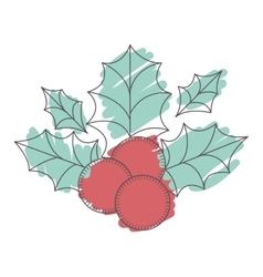 Holly berry decoration vector