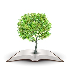 Tree on open book vector