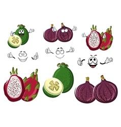Cartoon sweet exotic fig feijoa and pitaya fruits vector