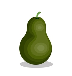 Delicious fruit pear isolated icon vector