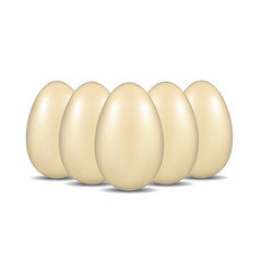 Eggs with shadow standing in the formation vector
