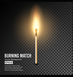 Realistic burning match matchstick flame vector