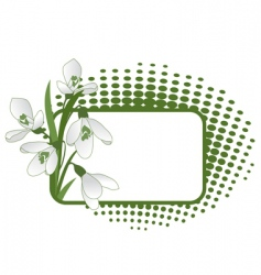 snowdrops pattern vector image