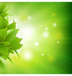 Green poster with leaves with grass vector