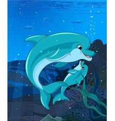 Swimming dolphins vector