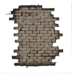 Old brick background vector