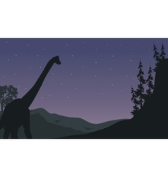 Silhouette of one Brachiosaurus at night vector image vector image