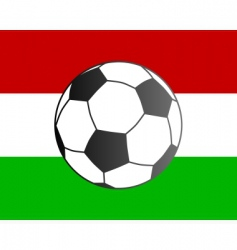 Flag of hungary and soccer ball vector