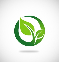 Green leaf round ecology logo vector