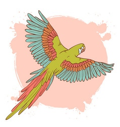 Parrot card flying vector image vector image