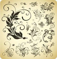 design ornament elements vector image