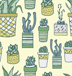 Cute hand drawn terrariums houseplants and cacti vector