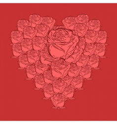 roses in heart shape vector