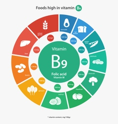 Foods high in vitamin b9 vector