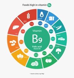 Foods high in vitamin b9 vector
