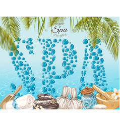 Spa drops banner vector