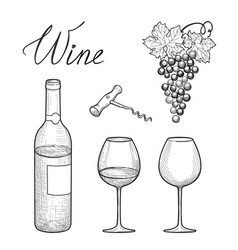 wine set wine glass bottle grape lettering vector image vector image
