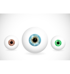 Eyes of different colors vector image