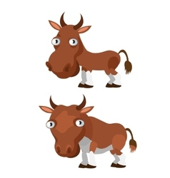 Brown cow and bull on a white background vector image vector image