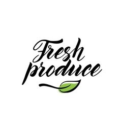 Hand drawn fresh produce brush lettering isolated vector
