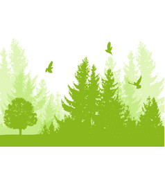 Nature background with firs vector