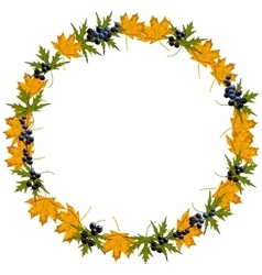 Autumn wreath with maple leaves vector