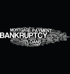 Loans after bankruptcy text background word cloud vector