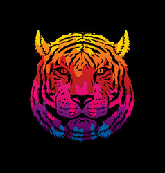 Tiger head front view face vector