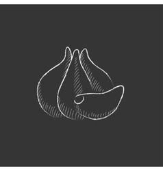 Garlic drawn in chalk icon vector