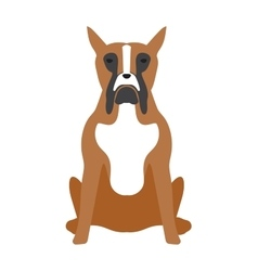 Angry flat dog pet and dog vector