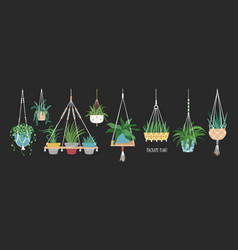 Collection of macrame hangers for potted plants vector