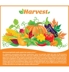 Harvest banner with text vector